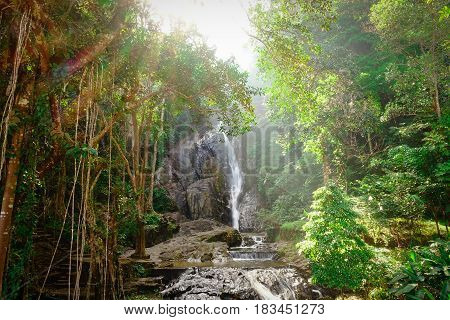 Close up beautiful peaceful waterfall in forest