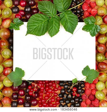 Recipe card on the background of fresh berries (raspberries, gooseberries, currants). Top view.