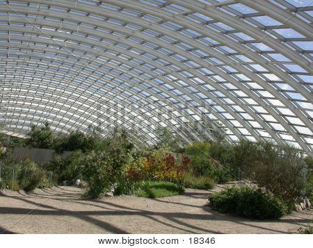 Welsh Botanic Gardens 01