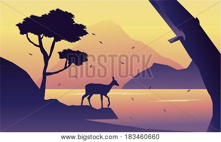 At the morning deer scenery silhuoette vector art