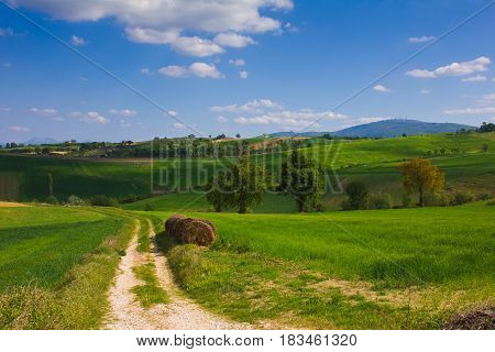 Country road in the rural area of Umbria region, Italy