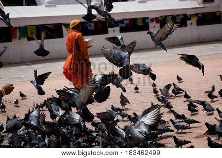 Near stupa Boudhanath Kathmandu Nepal travel summer