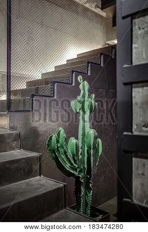 Big green cactus in the pot on the background of the stairway with metal mesh partition. This is a restaurant in a loft style with concrete walls. Closeup. Vertical.