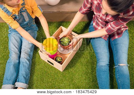 Close-up Partial View Of Mother And Daughter Sitting On Lawn With Pots And Potted Plants