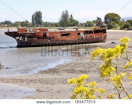 Rusting hull of the wrecked Janie Seddon near Motueka New Zealand