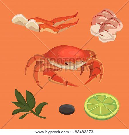 cartoon crab food collection, vector omar, set seafood and crab