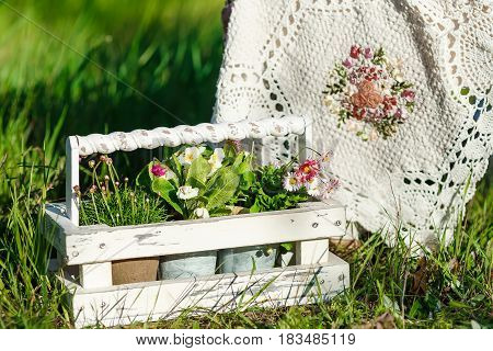 Pots with flowers in garden decor, standing in the box on the grass.