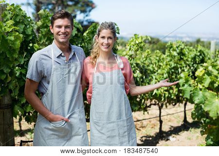 Portrait of smiling couple standing against plants at vineyard