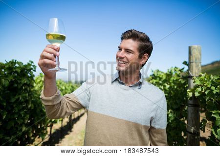 Happy young man holding wineglass at vineyard against clear blue sky
