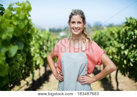 Portrait of smiling female farmer with hands on hip standing at vineyard
