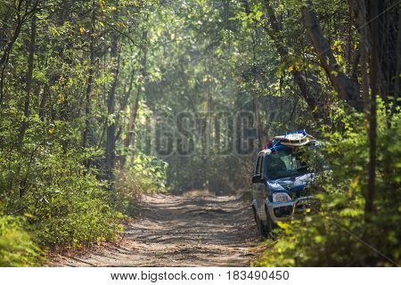 Car parked on the unpaved road in the deep tropical forest. Surf boards loaded on the roof