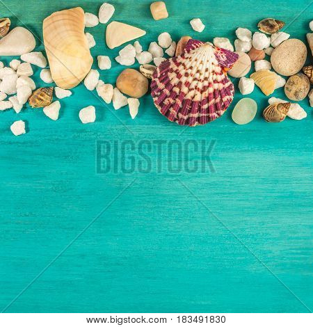 A square photo of sea shells and pebbles on a vibrant turquoise background texture with plenty of copy space