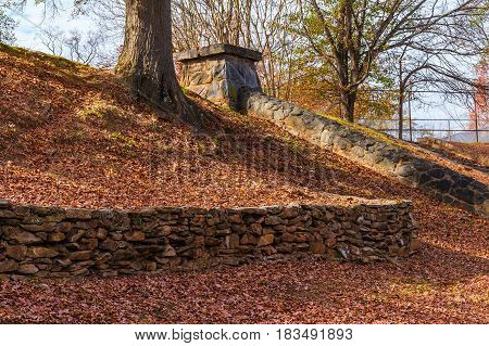 The stone wall and the tree trunk on the hillside of autumn park in sunny day
