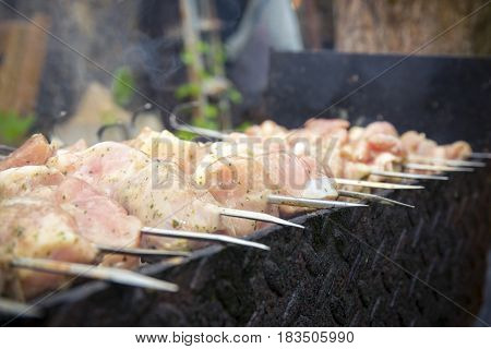 Close up view on cooking meat on skewers on grill