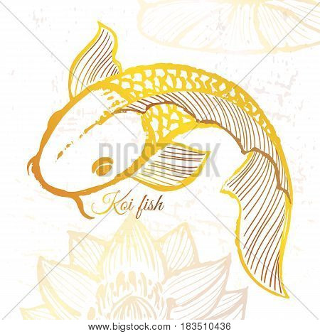Ink hand drawn golden koi fish illustration Vector background with asian fish