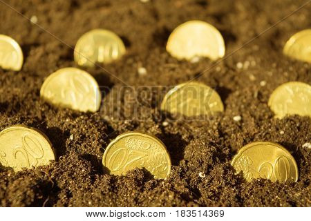Coins growing from ground with toned shot