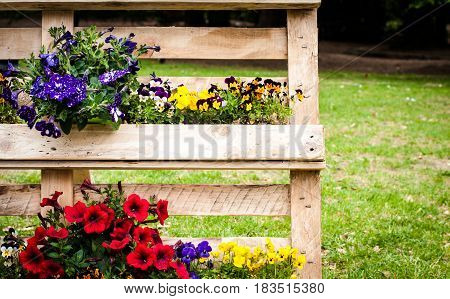spring colored flowers and plants on a wooden support