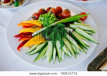 Fresh and colorful vegetable mix, beautifully served on white plate