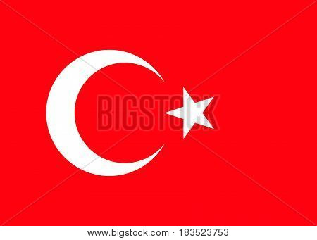 Turkey national flag. vector illustration. business education