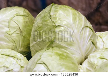 Pile of ripe cabbage, close-up food background