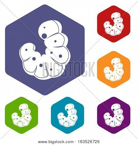 Worm icons set hexagon isolated vector illustration