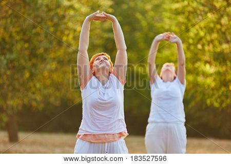 Two senior friends making pilates in the park in summer