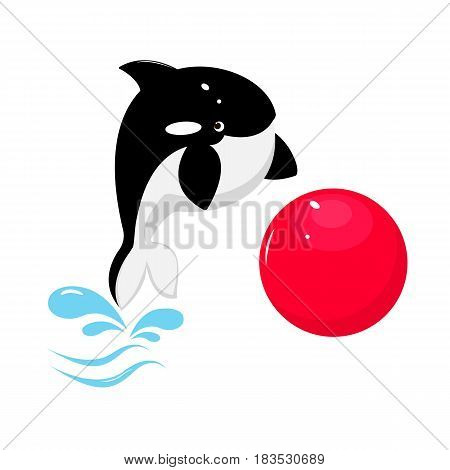 Vector flat background. Killer whale with red ball. Cute marine anumal.