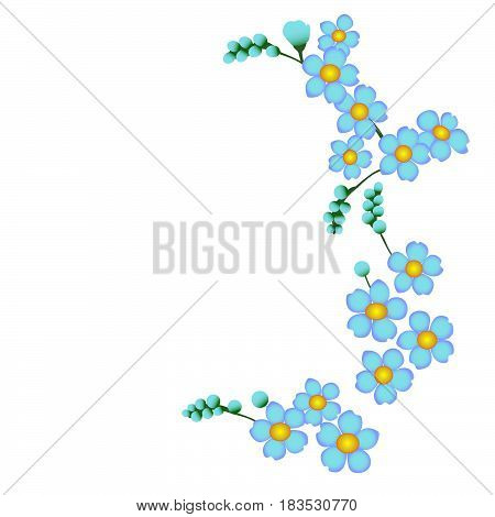 Forget-me-not blue flower ormnament background nature floral