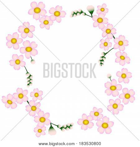 Forget-me-not rose flower ormnament background nature floral