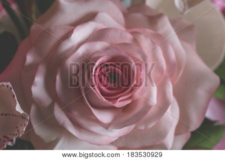 Close up Rose from pastry mastic or sugar, handmade pastry decorative, food art design concept