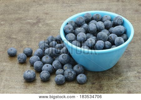 fresh blueberries in a blue bowl on a metal tray background
