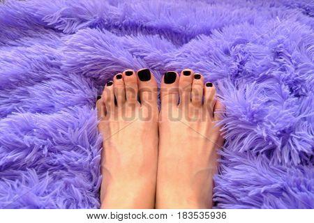Beautiful pedicure with varnish dark purple  nails