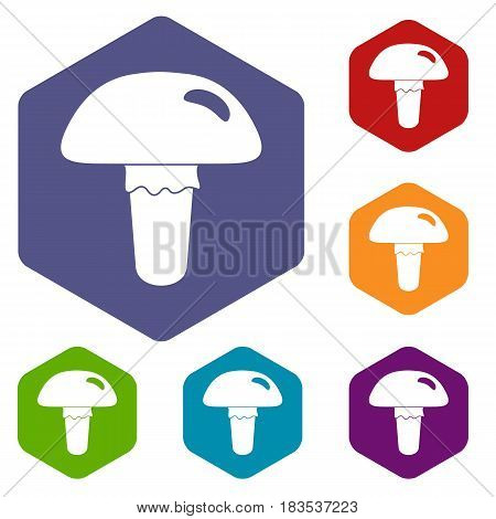 Poisonous mushroom icons set hexagon isolated vector illustration