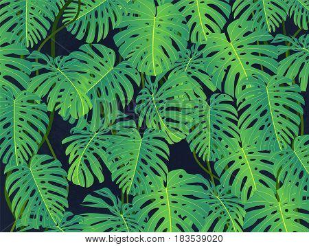Tropical background with palm leaves. Summer colorful pattern with tropical plants. Vector stock.