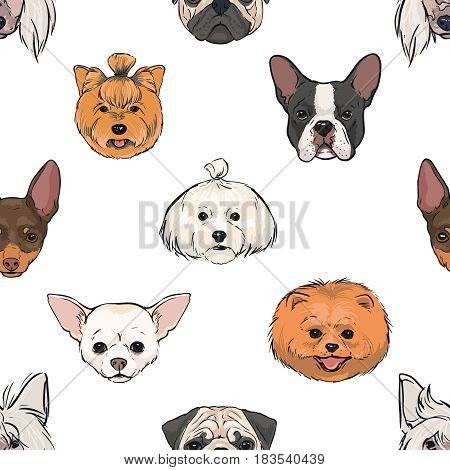 seamless pattern with decorative, thoroughbred dogs. head, muzzle on white. hand drawn realistic colorful background
