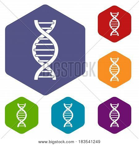DNA spiral icons set hexagon isolated vector illustration