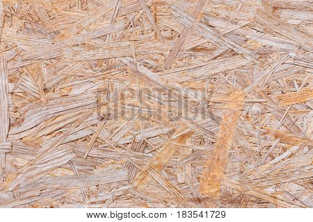 Background of pressed sawdust. Macro shot of wood particle board