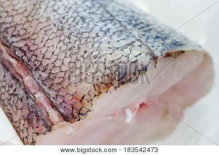 Fresh Pieces Of Hake On Showcase Of Seafood Market