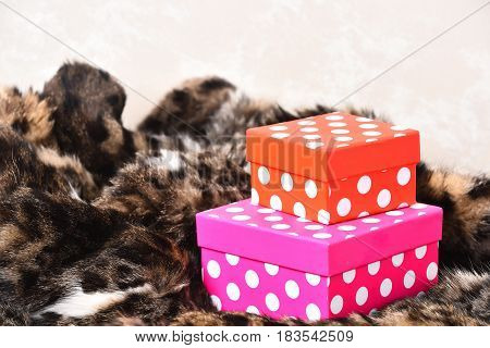 Colorful orange and pink polka dotted gift boxes on spotted fluffy fur coat background