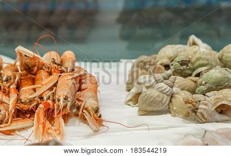 Fresh Lobsters And Whelks On Ice For Sale At Market