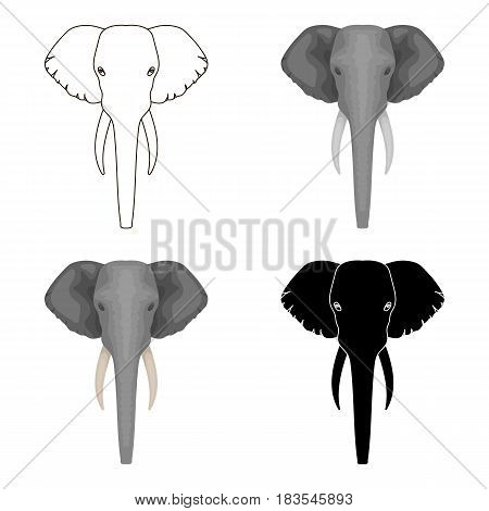 Elephant icon in cartoon design isolated on white background. Realistic animals symbol stock vector illustration.