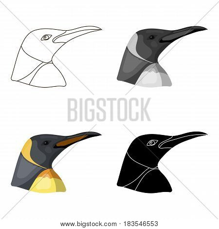 Penguin icon in cartoon design isolated on white background. Realistic animals symbol stock vector illustration.