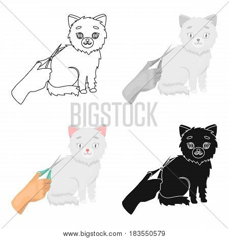 Grooming of a cat icon in cartoon design isolated on white background. Veterinary clinic symbol stock vector illustration.