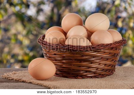eggs in a wicker basket on a wooden board with blurred garden background.