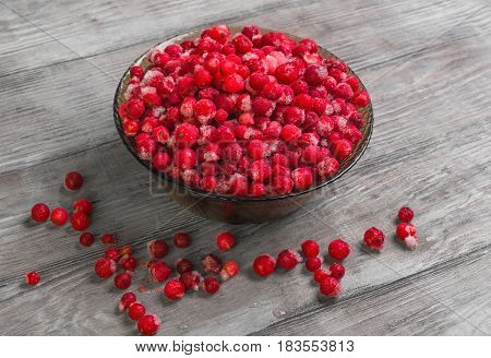 Frozen Berries Of Red Currant