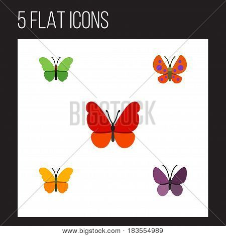 Flat Butterfly Set Of Violet Wing, Monarch, Moth And Other Vector Objects. Also Includes Butterfly, Monarch, Milkweed Elements.