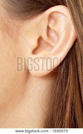 Brunette Girl Ear