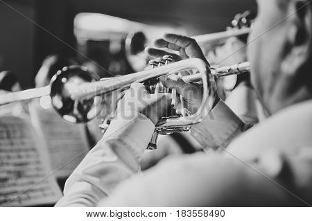 The trumpet in the hands of the musician in the orchestra closeup in black and white
