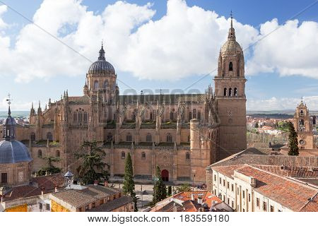 New Cathedral of Salamanca seen from La Clerecia roof