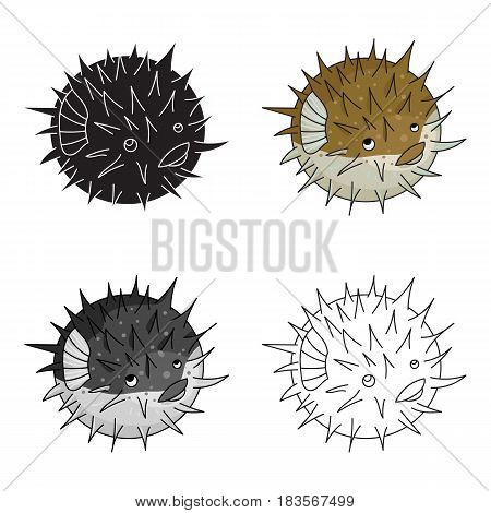 Porcupine fish icon in cartoon design isolated on white background. Sea animals symbol stock vector illustration.